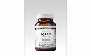 Agil-Art